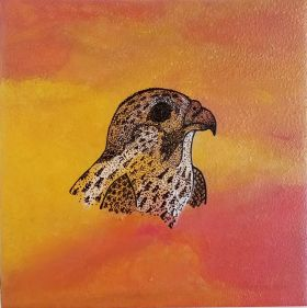 Falcon in the Desert - Print