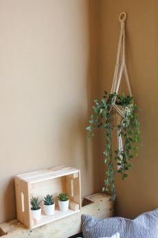 مكرامية كلاسيكية - علاقة للنباتات