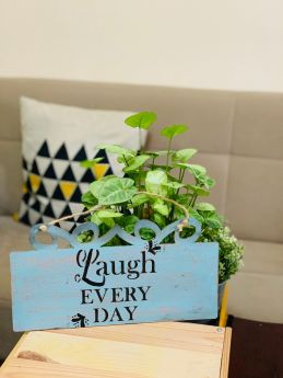 Inspirational Wall Art-Laugh Every Day